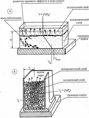 Схема развития процесса сушки